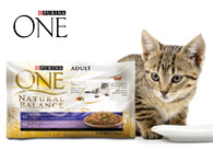 Purina ONE 4x85g