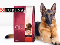 Link a Purina ONE Mini 1,5kg