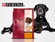 Purina ONE adult 7,5 kg – pollo